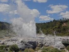 Pohutu Geysir in Rotorua
