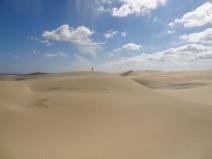Sanddünen beim Ninety Mile Beach