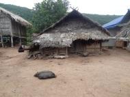 Dorfleben um Luang Namtha