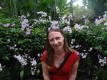 In der Stadt der Orchideen