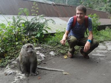 ... fanden wir nur Affen, keine Sicht auf den Merapi