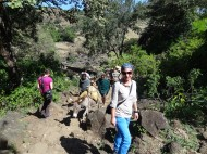 Wanderung zu den Nilfällen