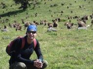 Theo bei den Gelada Affen