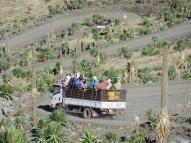 Weniger gemütlicher Transport über die Serpentinen