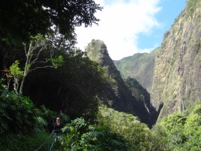 Iao needle in the Iao valley