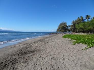 An diesem schwarz/weissen Strand lässt es sich gut mit Surfen beginnen.